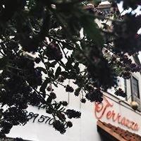 La Terrazza Ristorante Italiano