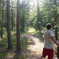 Superior Pines Disc Golf Course
