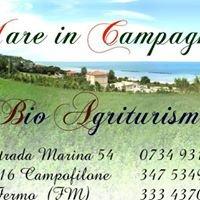 Agriturismo Mare in Campagna
