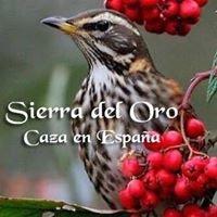 Sierra del Oro, Caccia tordi-chasse grive
