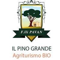 Il Pino Grande Agriturismo BIO