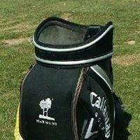 Golf Academy at Harmony Club