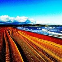 Playa Liencres