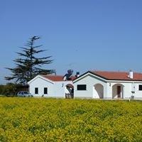 Agriturismo Casavacanze Biomele