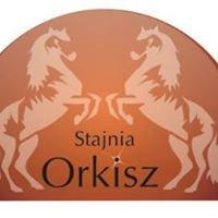 Stajnia Orkisz