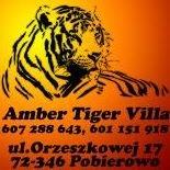 Amber Tiger Villa - Pobierowo
