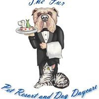 The Fur Pet Resort and Dog Daycare
