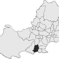 Bishopston RFC