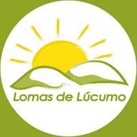 Lomas de Lúcumo
