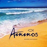 Ammos Restaurant Ανδρος
