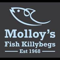 Molloy's Fish Killybegs