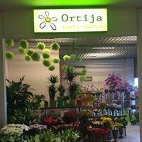 Ziedu salons Ortija