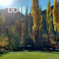 Disc Golf DC