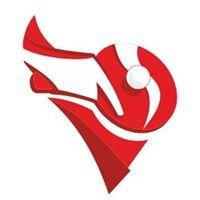 Калининградская областная федерация настольного тенниса
