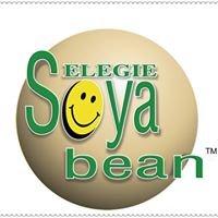 Selegie Soya bean