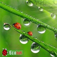 Ecobati Tournai