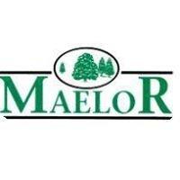 Maelor Forest Nurseries Ltd