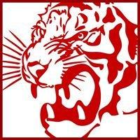 Red Tiger Martial Arts - Surrey