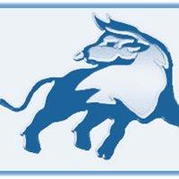 El Toro Sporting Goods, Inc.
