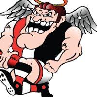 Benalla Saints Sports Club