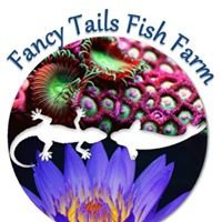Fancy Tail Fish Farm
