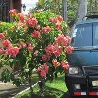 Transportes Turisticos San Lorenzo
