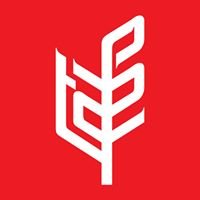 TAFE - Tractors and Farm Equipment Limited
