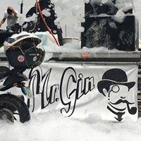 Mr. Gin