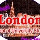 London School of Business SA