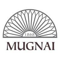 Cartoleria Mugnai - dal 1868