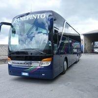 Autolinee Panepinto