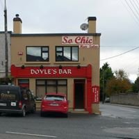 Doyle's Bar Ferns