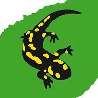 VLAB - Verein für Landschaftspflege & Artenschutz in Bayern