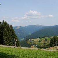 Schwarzwald-Live