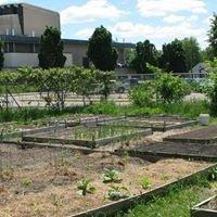 UWSP Campus Garden