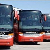 Autolinee Marino