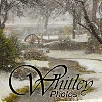 Whitley Photographic Services