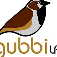 Gubbi Labs