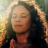 Artemisia Shine: Wild Heart Healing Arts