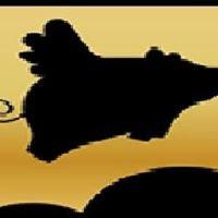 Flying pig ibiza