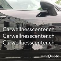 Carwellnesscenter Autokosmetik