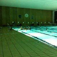 Vest Brøndby Svømmeklub