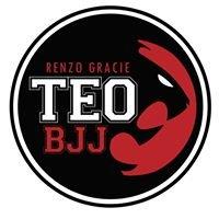 Teo Brazilian Jiu Jitsu (Renzo Gracie Team)