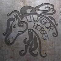 Lluagor Horses