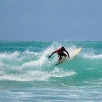 Amigo surf school