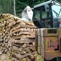 J.F Nesbitt timber extraction and firewood