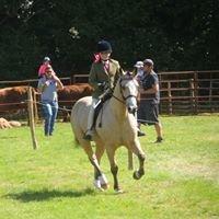 Bradnant Equestrian Centre