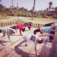 OceanTree Yoga 不急瑜珈小宇宙。