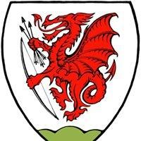 Austrian Longbow Society