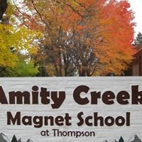 Amity Creek Auction News